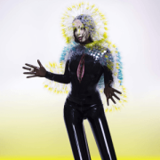 Björk_-_Vulnicura_(Official_Album_Cover).png